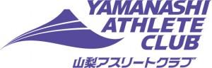 YAC4段